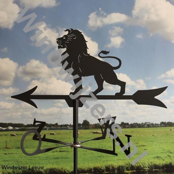 Windwijzer Leeuw